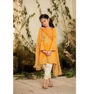 Winter Charizma Linen Girl Embroidered Dress